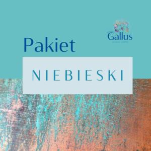 Olga_Kokot_Poradnia_Gallus_Pakiet Niebieski