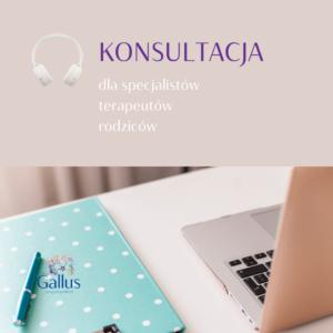 Olga_Kokot_Poradnia_Gallus_konsultacja_dla_specjalistów_terapeutów_rodziców
